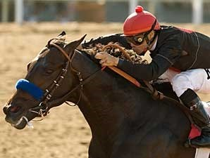 Two Step Salsa takes the Lazaro Barrera Memorial.