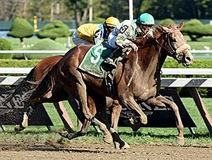 Star Grazing wins the Fleet Indian Stakes.