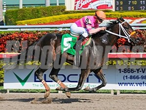 Nacho Business Maiden Win 01/30/11