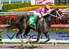 "Nacho Business<br><a target=""blank"" href=""http://www.bloodhorse.com/horse-racing/photo-store?ref=http%3A%2F%2Fpictopia.com%2Fperl%2Fgal%3Fprovider_id%3D368%26ptp_photo_id%3D9420826%26ref%3Dstory"">Order This Photo</a>"