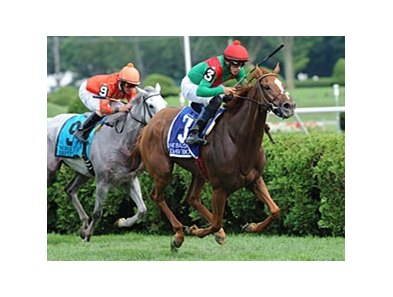 "Daveron has won all three of her starts this year, including the Ballston Spa (shown).<br><a target=""blank"" href=""http://www.bloodhorse.com/horse-racing/photo-store?ref=http%3A%2F%2Fpictopia.com%2Fperl%2Fgal%3Fprovider_id%3D368%26ptp_photo_id%3D9648640%26ref%3Dstory"">Order This Photo</a>"