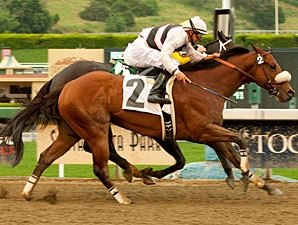 Amazombie Buries Foes in Tight Potrero Grande