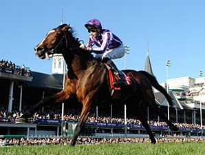 St Nicholas Abbey in the 2011 Breeders' Cup Turf.