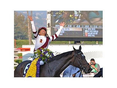 "Royal Delta is a two-time winner of the 'Breeders' Cup Ladies' Classic.'<br><a target=""blank"" href=""http://photos.bloodhorse.com/BreedersCup/2012-Breeders-Cup/Ladies-Classic/26130180_8NMncD#!i=2192106719&k=tgXbqJq"">Order This Photo</a>"