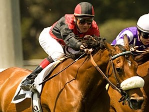 Gotta Have Her wins the 2010 Royal Heroine.