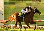"Sky Cape flies home in the La Jolla.<br><a target=""blank"" href=""http://www.bloodhorse.com/horse-racing/photo-store?ref=http%3A%2F%2Fpictopia.com%2Fperl%2Fgal%3Fprovider_id%3D368%26ptp_photo_id%3D5465712%26ref%3Dstory"">Order This Photo</a>"