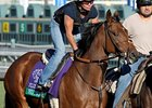 "Rumor<br><a target=""blank"" href=""http://photos.bloodhorse.com/BreedersCup/2012-Breeders-Cup/Works/26130247_gxH6nS#!i=2183299068&k=gBW7sfb"">Order This Photo</a>"