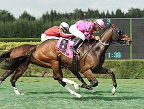 Bad Debt wins the 2014 Millions Turf Preview Stakes.
