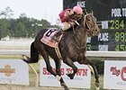 Delta Downs Jackpot winner Sabercat
