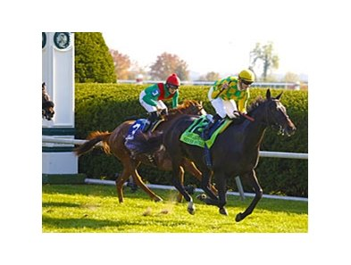 "Leparoux leads all riders with eight victories at Keeneland, including a win in the First Lady on Never Retreat.<br><a target=""blank"" href=""http://www.bloodhorse.com/horse-racing/photo-store?ref=http%3A%2F%2Fpictopia.com%2Fperl%2Fgal%3Fprovider_id%3D368%26ptp_photo_id%3D9703837%26ref%3Dstory"">Order This Photo</a>"