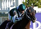 Regally Ready in the 2011 Breeders' Cup.