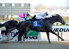 Kelli Got Frosty wins a division of the New York Stallion Stakes. 