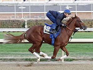 Tell a Kelly works at Churchill Downs on October 23, 2010.