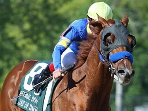 Line of David to Stand at Spendthrift