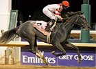 "Unrivaled Belle comes home strong in the Breeders' Cup Ladies' Classic.<br><a target=""blank"" href=""http://www.bloodhorse.com/horse-racing/photo-store?ref=http%3A%2F%2Fpictopia.com%2Fperl%2Fgal%3Fprovider_id%3D368%26ptp_photo_id%3D9266806%26ref%3Dstory"">Or"