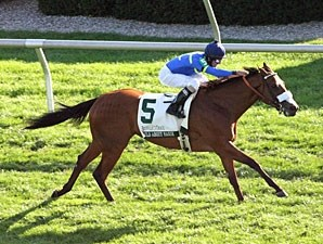 Wild About Marie wins the 2011 Franklin County.