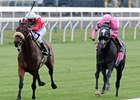 "Air Support (left) gets up late to win the Transylvania on opening day at Keeneland.<br><a target=""blank"" href=""http://www.bloodhorse.com/horse-racing/photo-store?ref=http%3A%2F%2Fpictopia.com%2Fperl%2Fgal%3Fprovider_id%3D368%26ptp_photo_id%3D9482455%26ref%3Dstory"">Order This Photo</a>"