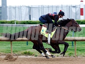 Orb works alongside Overwhelming at Churchill Downs April 29, 2013.