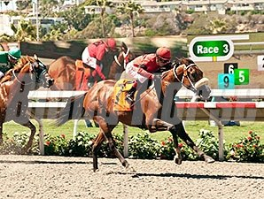 Kate's Event wins a claiming race at Del Mar, August 14, 2014.