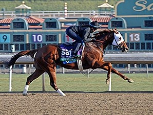 Groupie Doll - 2013 Breeders' Cup, October 29, 2013.