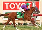 California Chrome Sparkles in Hollywood Derby