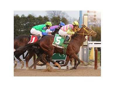 "More Than a Reason outfinishes Stormy's Majesty and Arson Squad to win the Queens County.<br><a target=""blank"" href=""http://www.bloodhorse.com/horse-racing/photo-store?ref=http%3A%2F%2Fpictopia.com%2Fperl%2Fgal%3Fprovider_id%3D368%26ptp_photo_id%3D9323289%26ref%3Dstory"">Order This Photo</a>"
