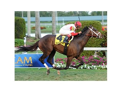 Charming Kitten won the Kitten's Joy Stakes at Gulfstream Jan. 20.