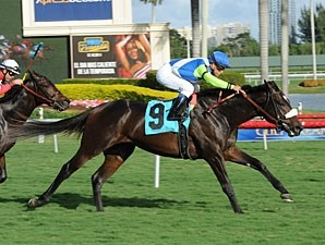 Margano, Maiden Win, December 10, 2011.