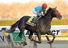 "Called to Serve streaks home to win the Discovery.<br><a target=""blank"" href=""http://photos.bloodhorse.com/AtTheRaces-1/at-the-races-2012/22274956_jFd5jM#!i=2220978238&k=rJxndZT"">Order This Photo</a>"