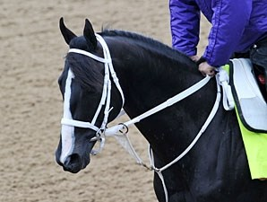 Black Onyx - Churchill Downs, April 29, 2013.