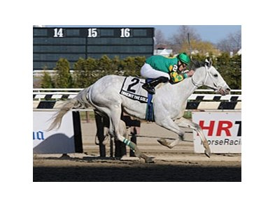 "Inherit the Gold keeps on rolling in the Excelsior Stakes.<br><a target=""blank"" href=""http://www.bloodhorse.com/horse-racing/photo-store?ref=http%3A%2F%2Fpictopia.com%2Fperl%2Fgal%3Fprovider_id%3D368%26ptp_photo_id%3D9473386%26ref%3Dstory"">Order This Photo</a>"