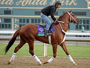 Smiling Tiger - Breeders' Cup 2012