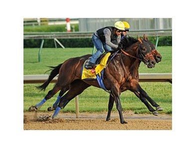 Liaison breezing at Churchill Downs 4/30/2012.