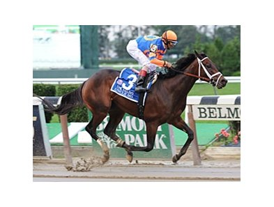 "Uncle Mo<br><a target=""blank"" href=""http://www.bloodhorse.com/horse-racing/photo-store?ref=http%3A%2F%2Fpictopia.com%2Fperl%2Fgal%3Fprovider_id%3D368%26ptp_photo_id%3D9695206%26ref%3Dstory"">Order This Photo</a>"