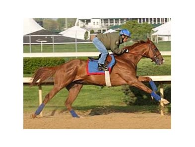 Adriano works April 20 at Churchill Downs.