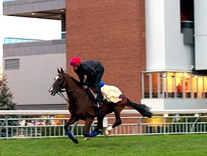 Dance And Dance at Woodbine, 09/17/11