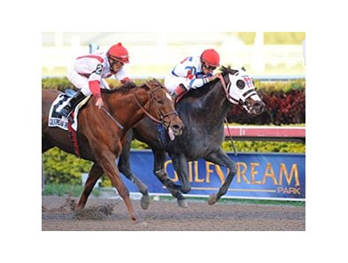 "Apriority (right) overcame a stumble and Zero Rate Policy to win the Mr. Prospector.<br><a target=""blank"" href=""http://www.bloodhorse.com/horse-racing/photo-store?ref=http%3A%2F%2Fpictopia.com%2Fperl%2Fgal%3Fprovider_id%3D368%26ptp_photo_id%3D9790908%26ref%3Dstory"">Order This Photo</a>"