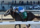 "Mamdooha has won 5 races in a row.<br><a target=""blank"" href=""http://photos.bloodhorse.com/AtTheRaces-1/At-the-Races-2014/35724761_2vdnSX#!i=3123774316&k=z27Fkfn"">Order This Photo</a>"