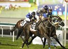 Viscount Nelson won the Al Fahidi Fort at Meydan on Feb. 16.