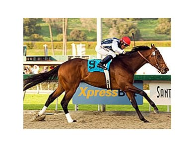 Monterey Jazz will make his first lifetime start outside of California in the April 26 Texas Mile (gr. III).