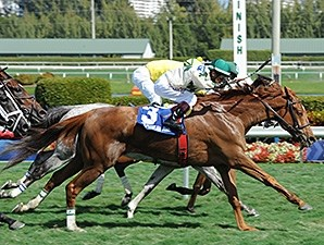 Ready Signal wins the Ten Palm Stakes.