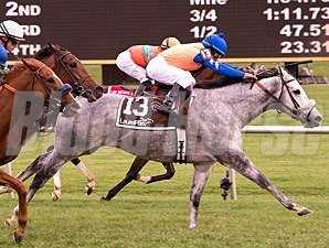 Silver Screamer wins the 2012 Lady Baltimore Stakes.