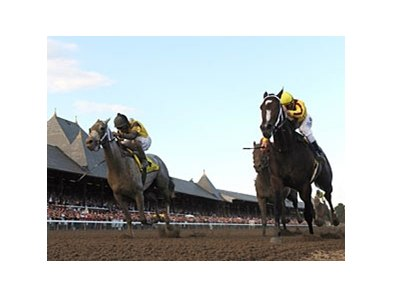 "Rachel Alexandra was able to conquer Macho Again and the rest of the field in the Woodward Stakes.<br><a target=""blank"" href=""http://www.bloodhorse.com/horse-racing/photo-store?ref=http%3A%2F%2Fpictopia.com%2Fperl%2Fgal%3Fprovider_id%3D368%26ptp_photo_id%3D8459934%26ref%3Dstory"">Order This Photo.</a>"