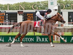 Flower Spell wins the 2013 Meafara Stakes.
