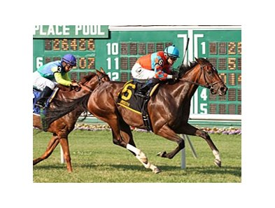 Laughing leaves Dayatthespa behind to win the Eatontown Handicap.