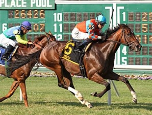 Laughing wins the 2013 Eatontown Stakes.