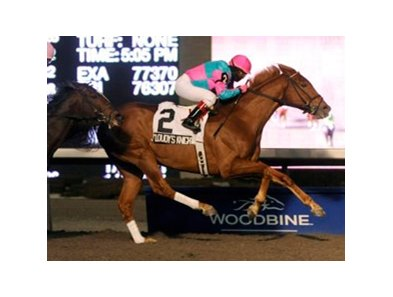 9-year-old Cloudy's Knight was victorious in the Valedictory Stakes at Woodbine.