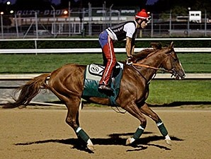 California Chrome gallops at Churchill Downs, May 12, 2014