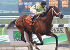 "Quality Road will look to return to the winner's circle in the Woodward. <br><a target=""blank"" href=""http://www.bloodhorse.com/horse-racing/photo-store?ref=http%3A%2F%2Fpictopia.com%2Fperl%2Fgal%3Fprovider_id%3D368%26ptp_photo_id%3D9047698%26ref%3Dstory"">Order This Photo</a>"