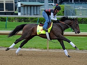 Orb works at Churchill Downs for the Kentucky Derby.